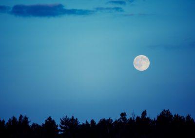 秋の夜長に、お月見はいかがですか?