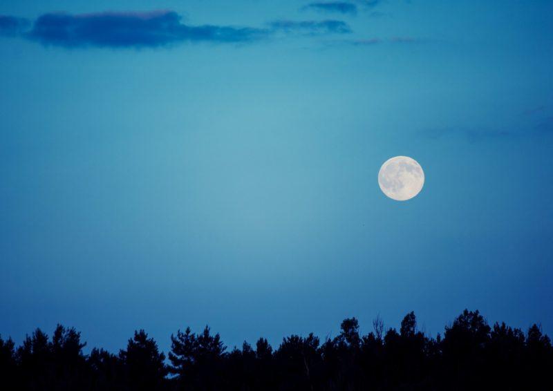 秋の夜長に、お月見はいかがですか?の画像